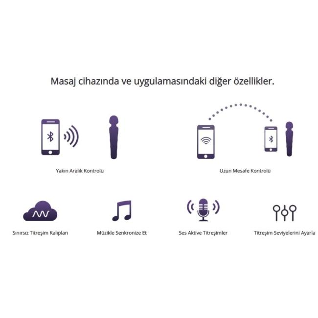 Lovense Domi 2 Mini Ultra Güçlü Akıllı Telefon Uyumlu Masaj Aleti Vibratör
